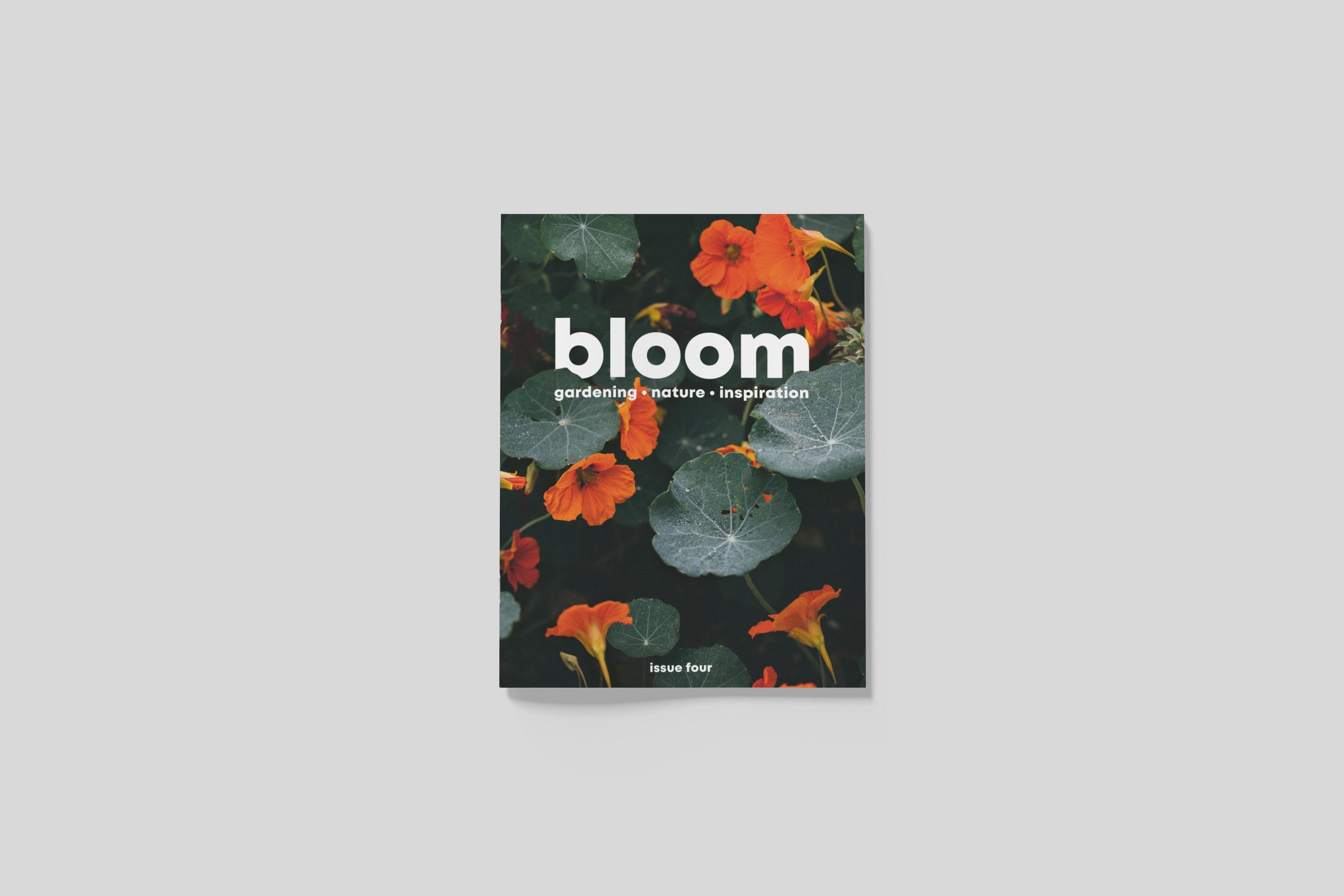 BloomIssue4_front_01.jpg