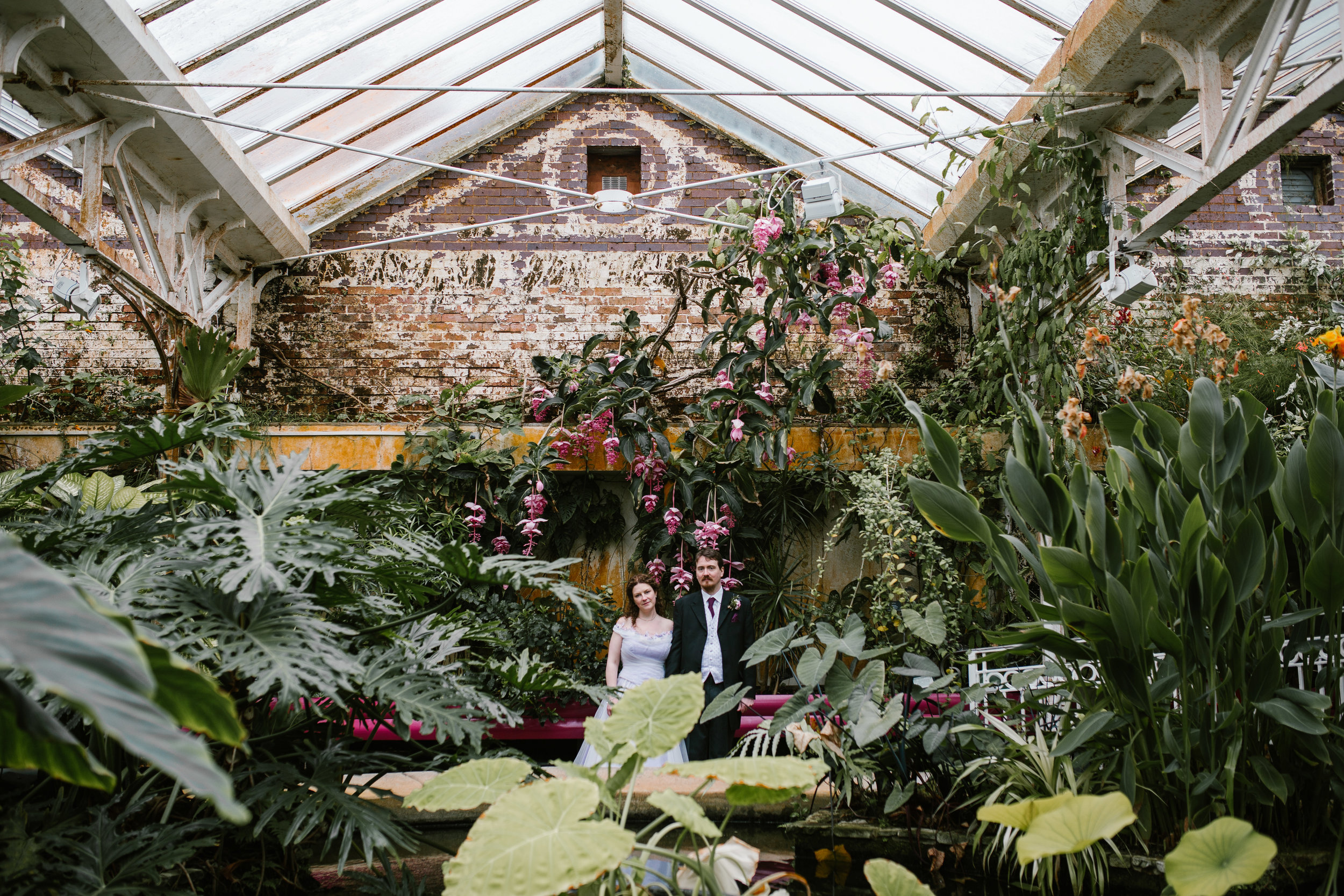 newlyweds stand amongst the flowers in a greenhouse at the botanical gardens in birmingham after their wedding ceremony, the bride wears a purple wedding dress- birmingham wedding photography