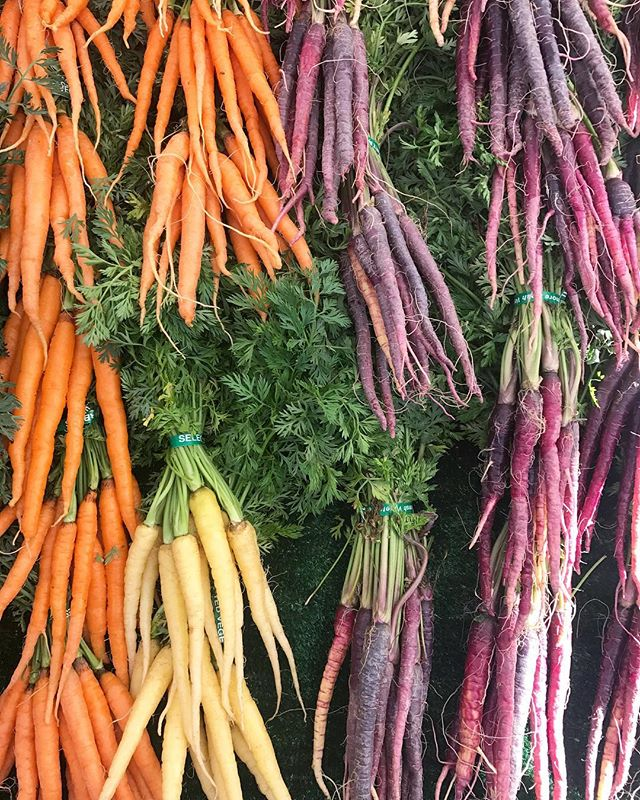 Check out these top ten benefits of carrots. -