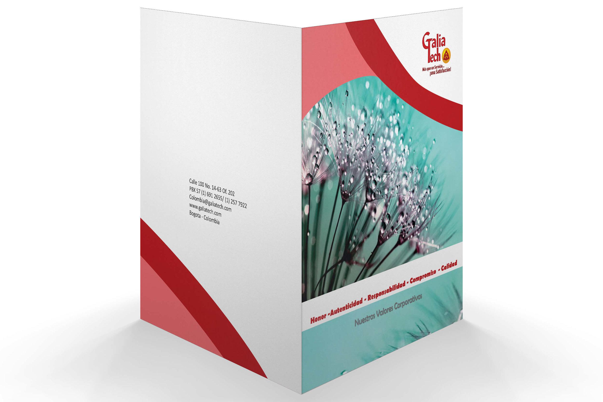 Presentation Portfolio for GaliaTech Consulting