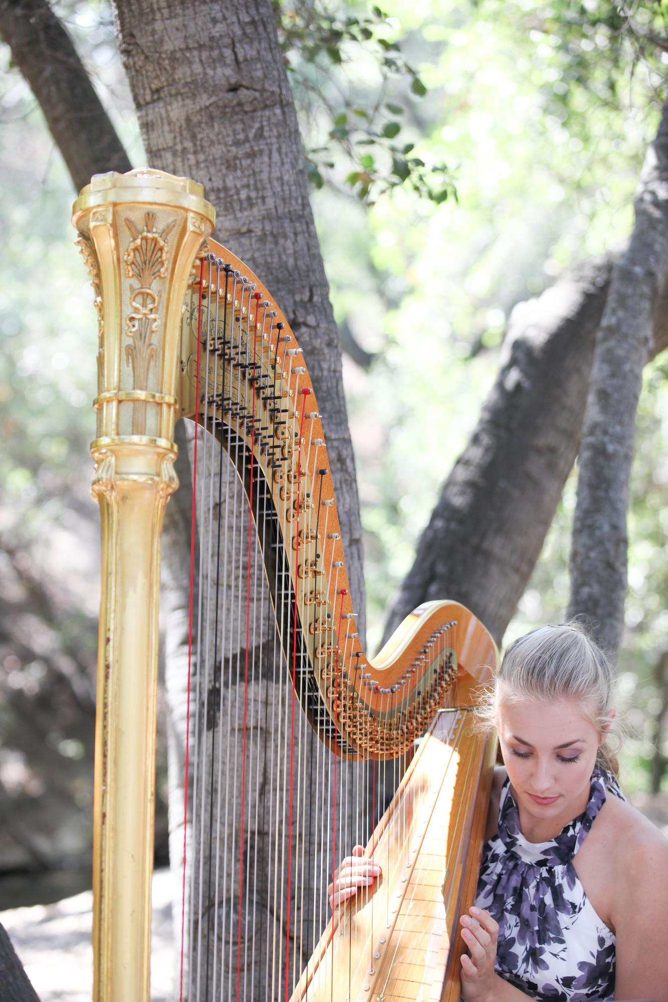 Wedding Music - Image by Wheeland photography