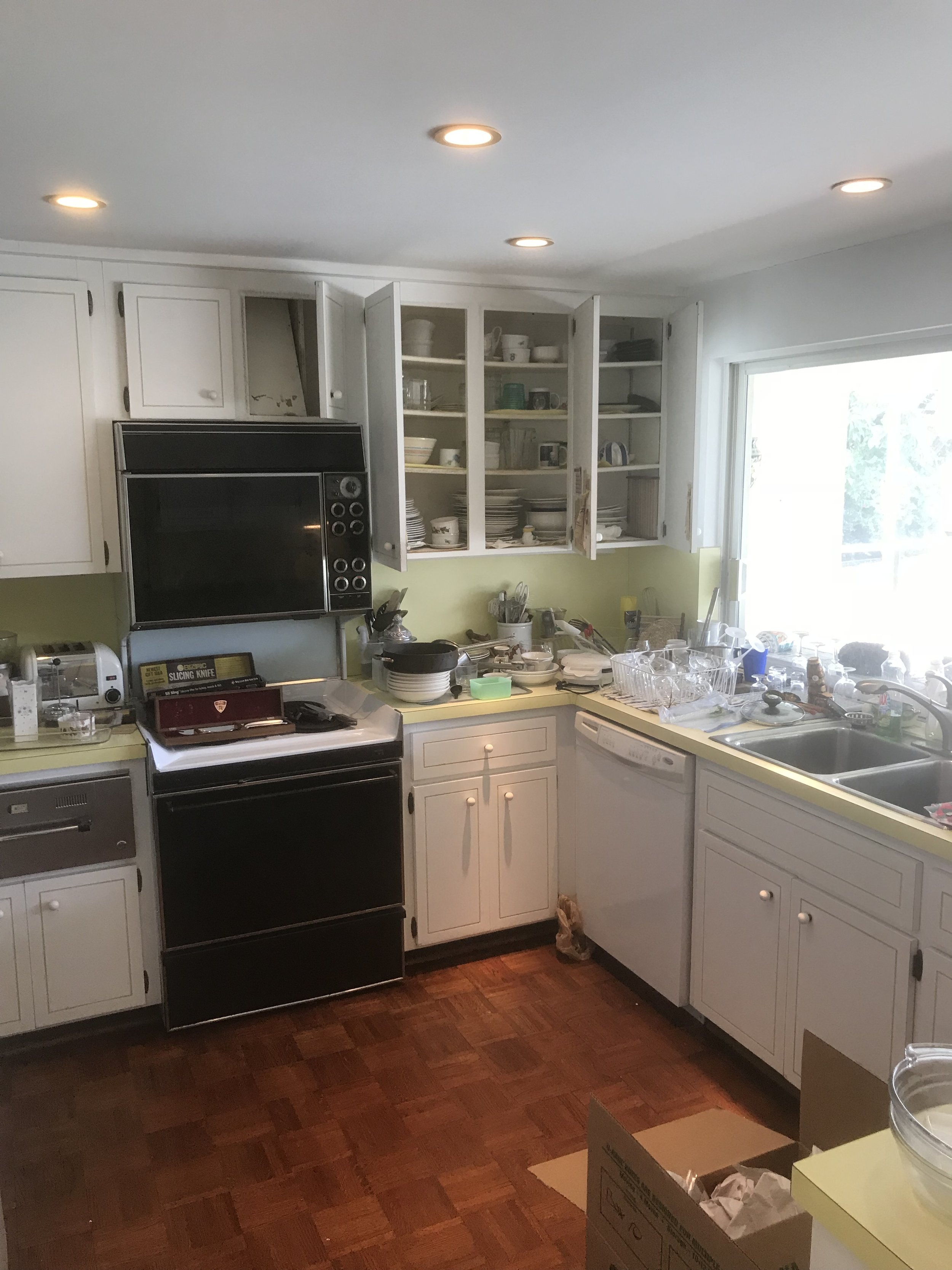 The vintage kitchen ;). Total remodel (still working on the layout) but hoping for a large island and potentially carrying the glass doors into the kitchen area to make the entire back of the house floor to ceiling glass doors.