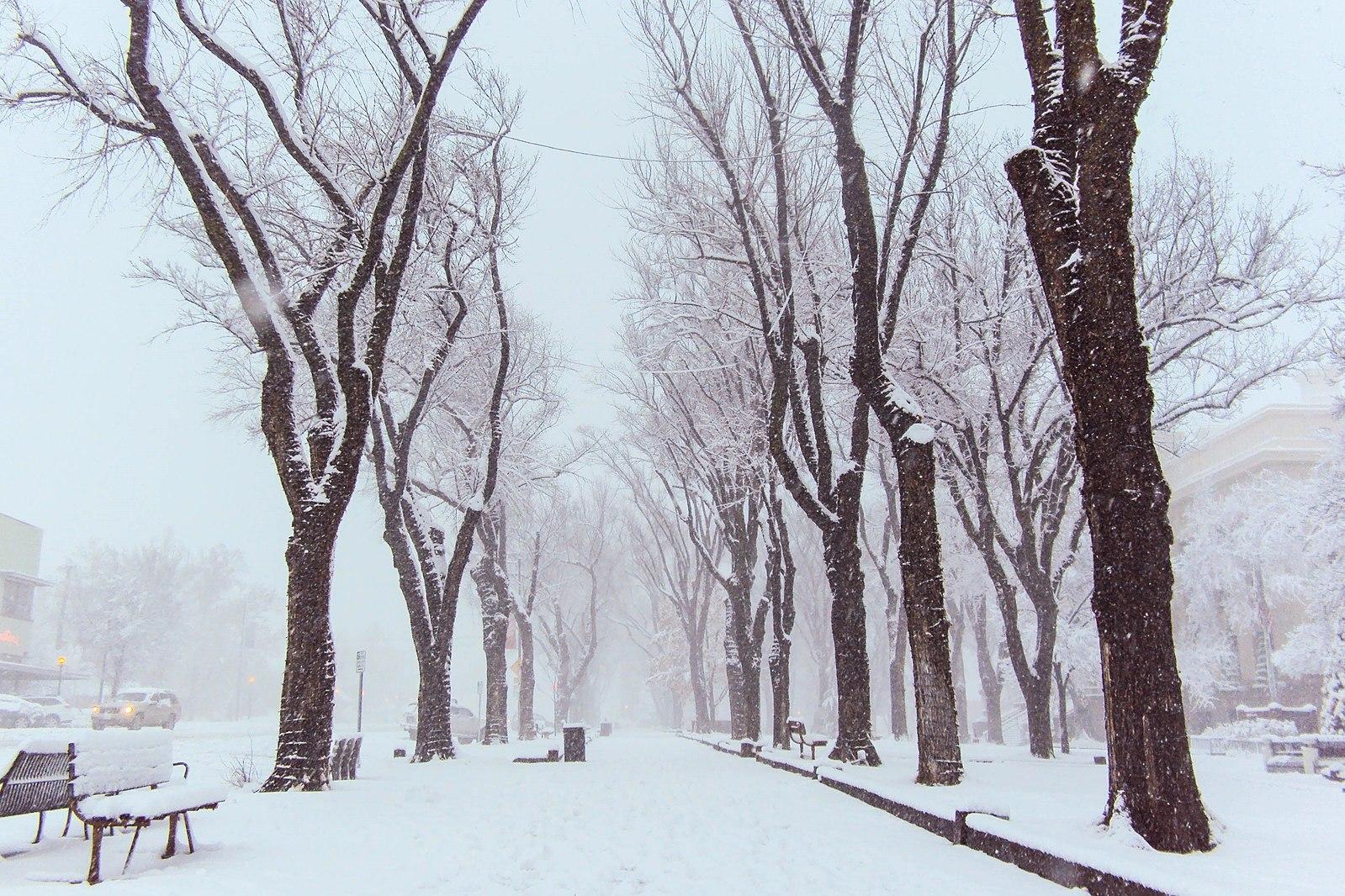 snow_downtown.jpg