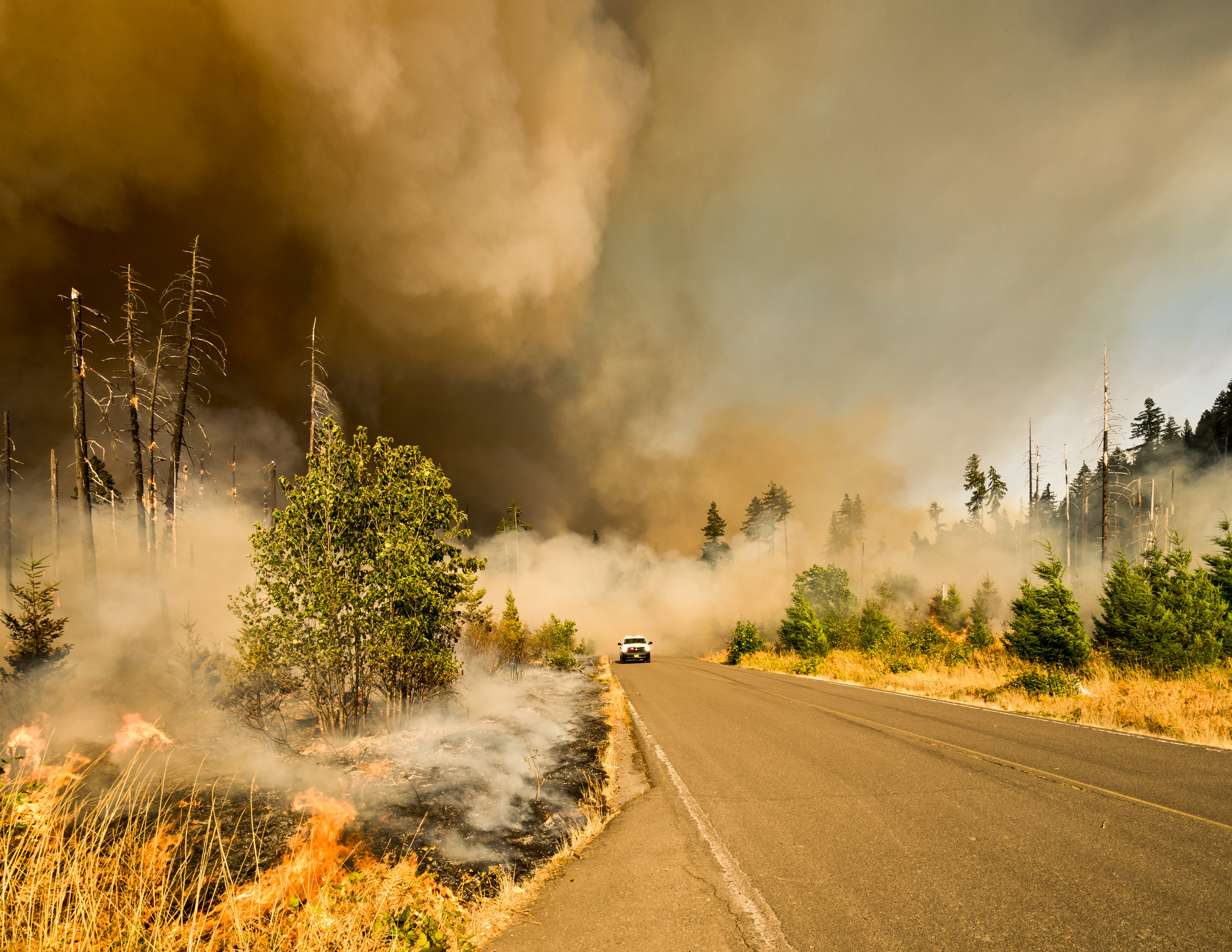 Deadly wildfires spread yearly in Arizona and across the southwest.