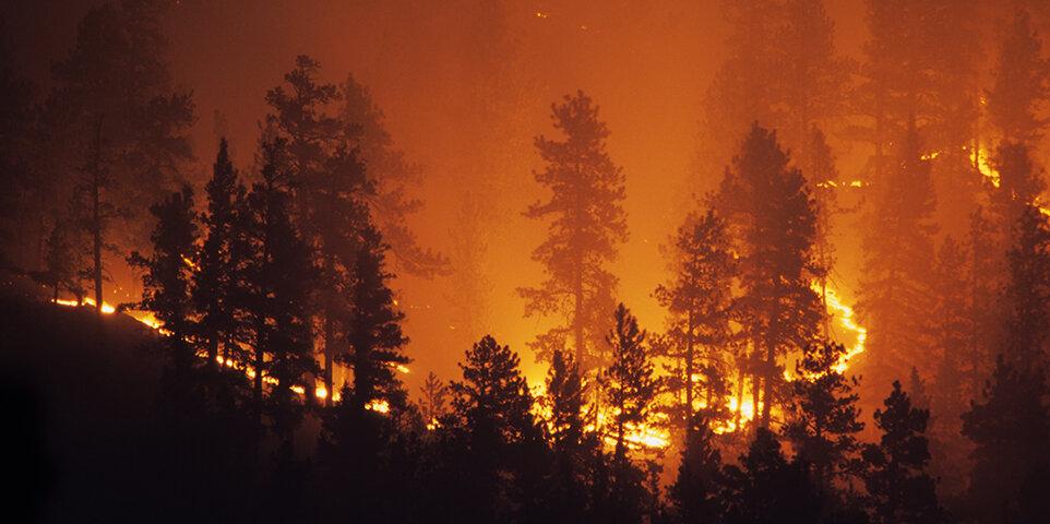 p_wildfires_157384116.jpg