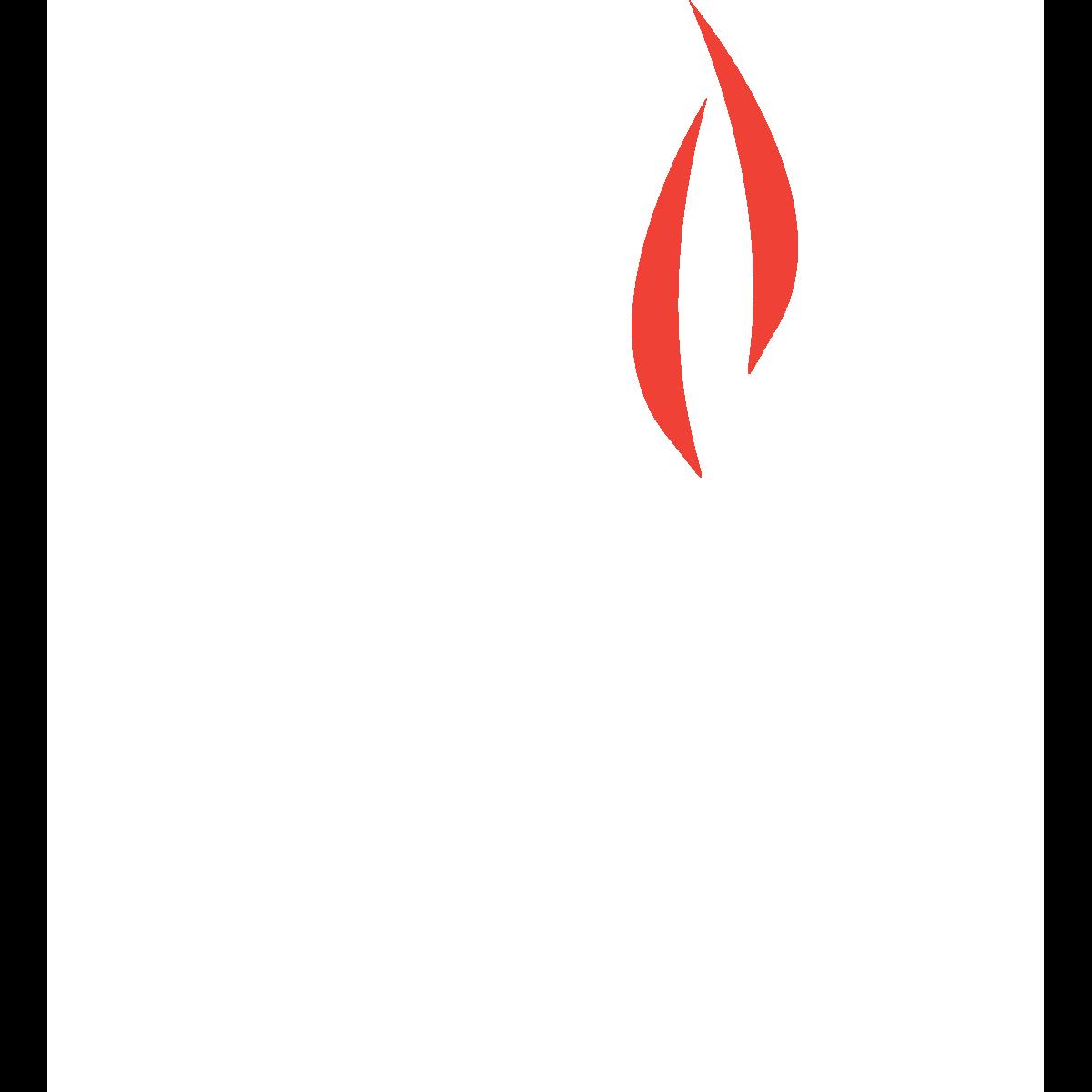 WF_Logo_white_icon.png