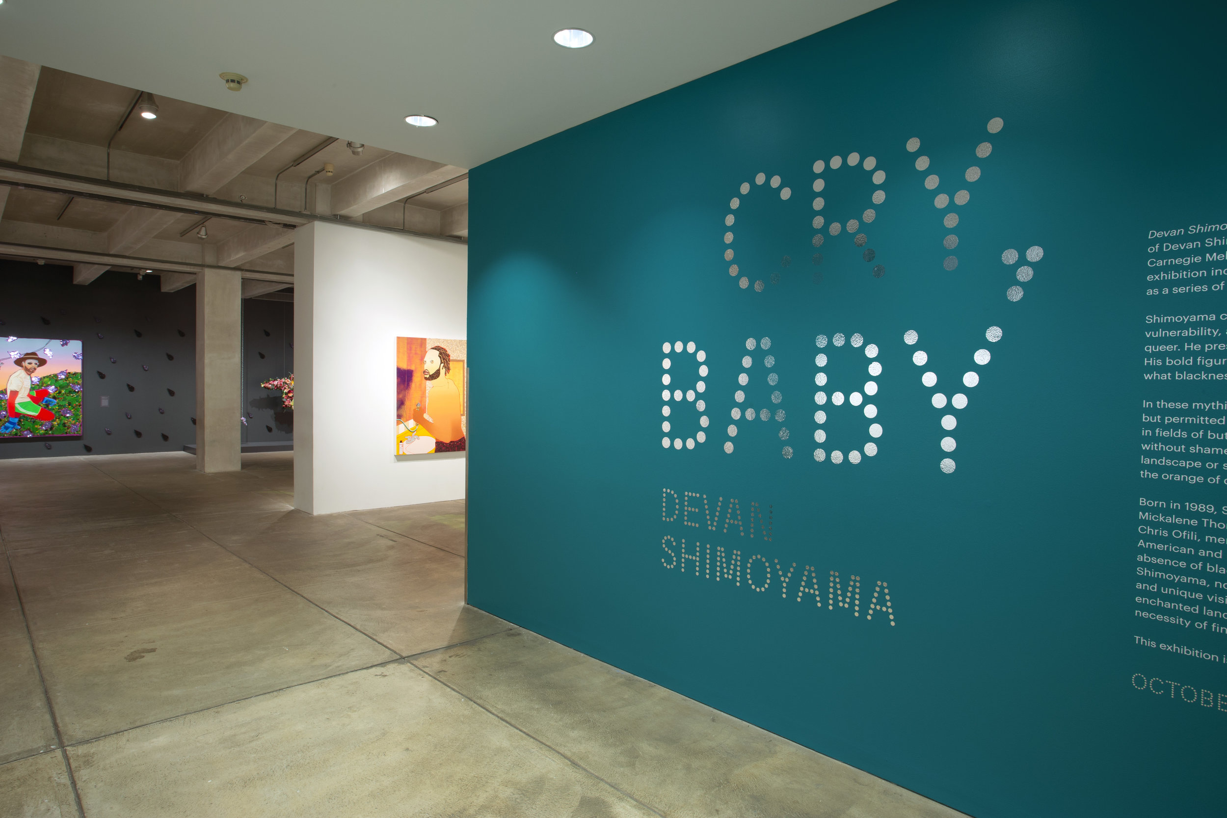 Devan Shimoyama: Cry, Baby