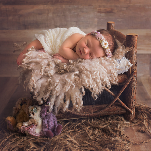 Rustic Wooden Newborn Bed
