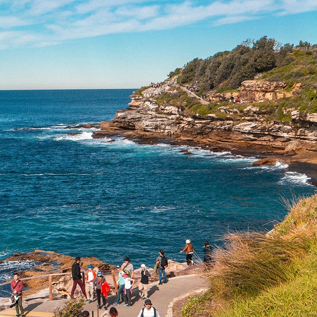 We took a bus to Bondi Beach to do the well known Bondi to Corgee walk, which was about 4 miles of coastal trail. We saw so many gorgeous cliffs and bays, and even jumped the fence a few times to get closer to the edge. It was gorgeous!