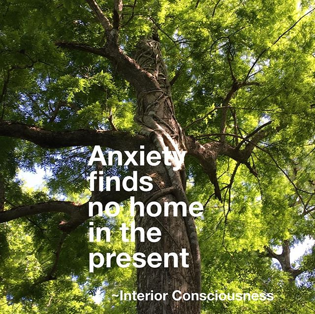 When we are not mindful, when we let our thoughts race ahead, creating too much mental chatter, we invite anxiety into our emotional space.  Include meditation and mindfulness as part of your daily mental hygiene. . . . #interiorconsciousness #mentalhealth #mentalhealthawareness #mentalhygiene #meditation #mindfulness #breathe #mindbodyconnection #consciousness