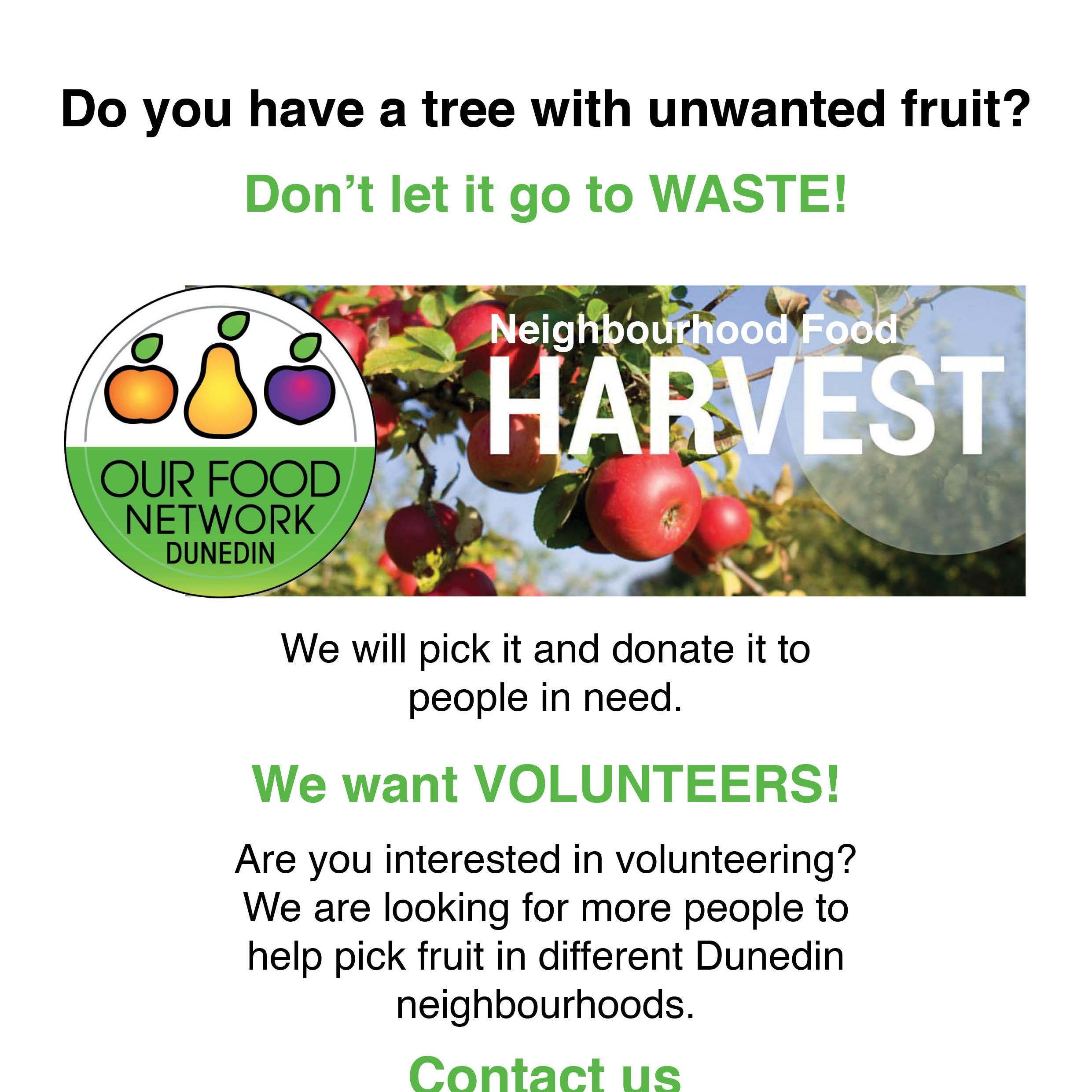 OFN Neighbourhood Food Harvest Leaflet.jpg