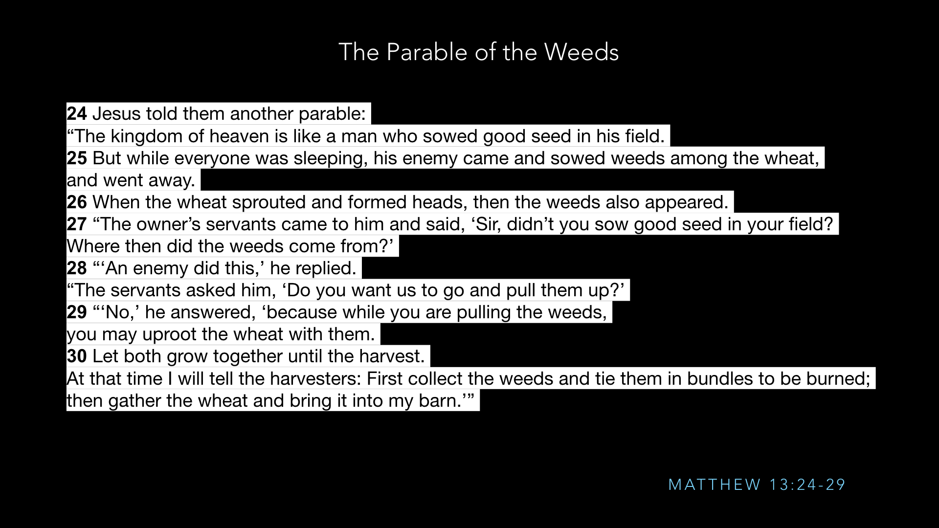 Parables - Weeds - SV - Sept19.007.jpeg