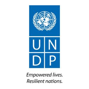 UNDP-Square-Web.jpg
