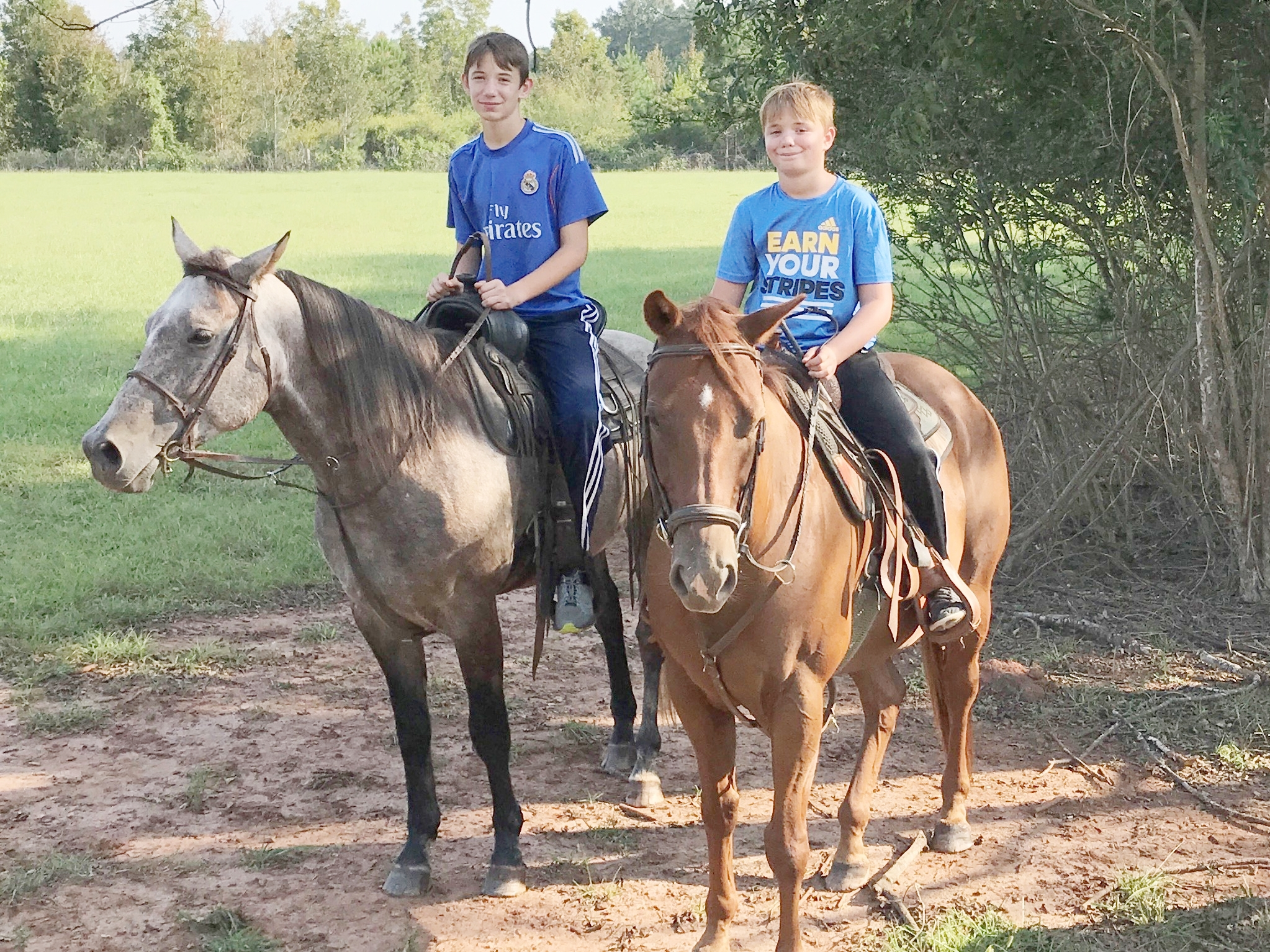Relaxing rides in the pasture