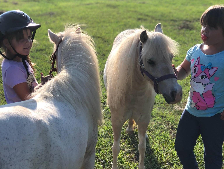 girls ponies2.jpg