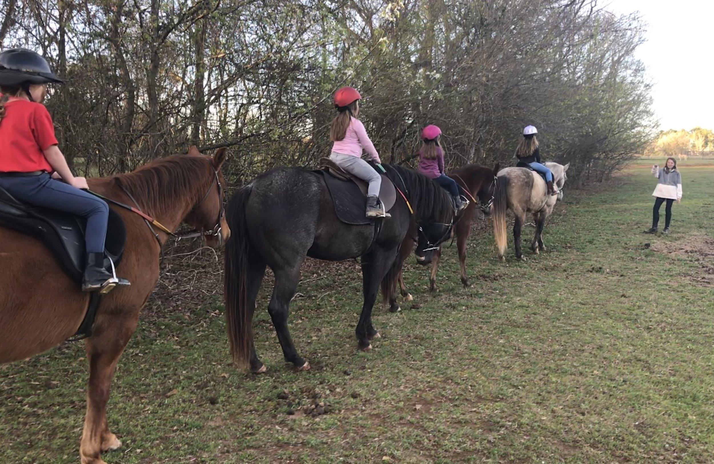 maya pasture girls.jpg