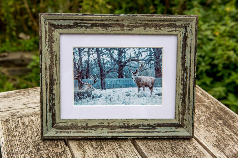 Wintery Deer by Cristina Schek