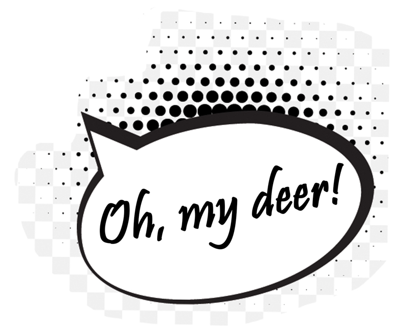 The Deer Whisperers, Leigh Gallery Window Display (2).jpg