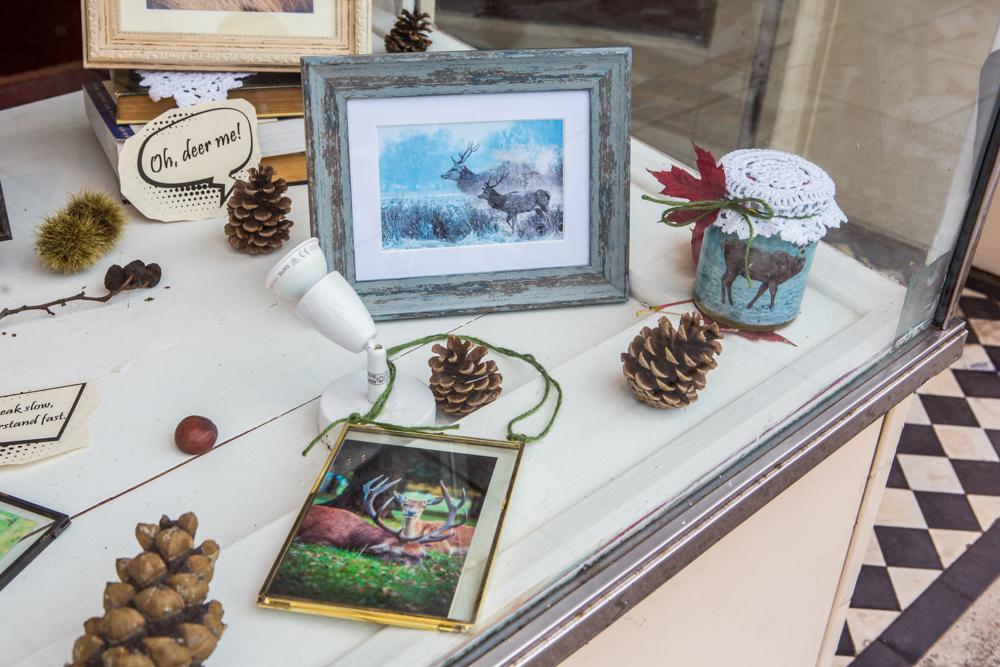 The Deer Whisperers, Leigh Gallery Window Display by Cristina Schek (83).jpg