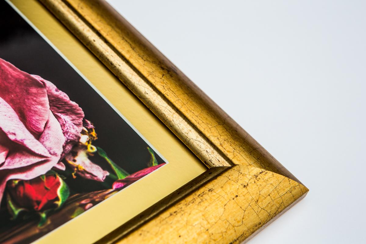 La Vie En Roses Series by Cristina Schek (24).jpg
