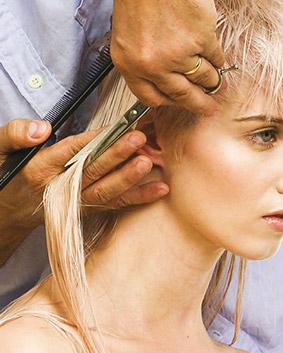 Etape 8   Des deux côtés de la tête, couper-glisser sur une élévation basse.