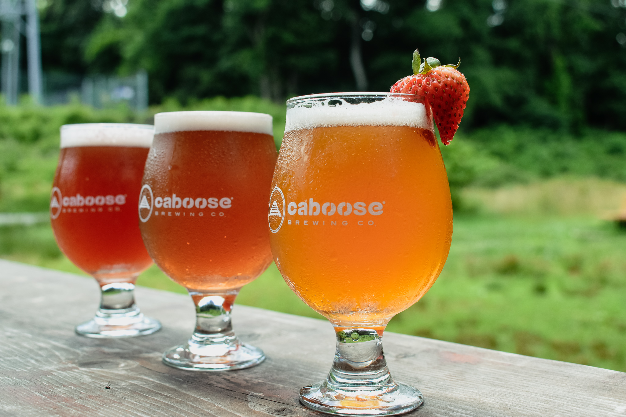 White Tail Wit with Blackberry Shrub, Hilltop Haze with Blueberry Shrub, and Fog IPA with Strawberry Shrub
