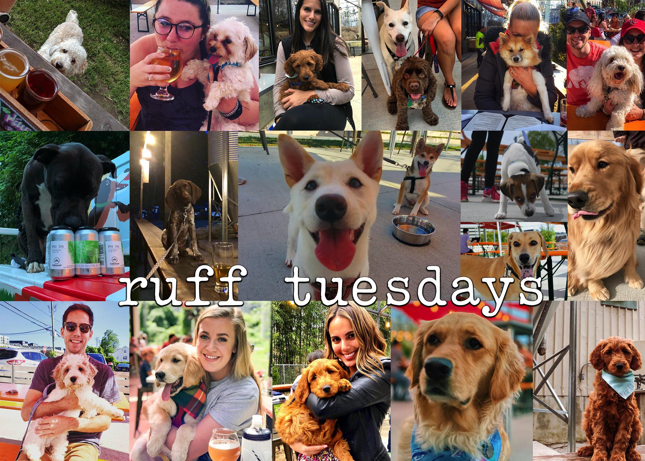 Ruff Tuesdays.jpg