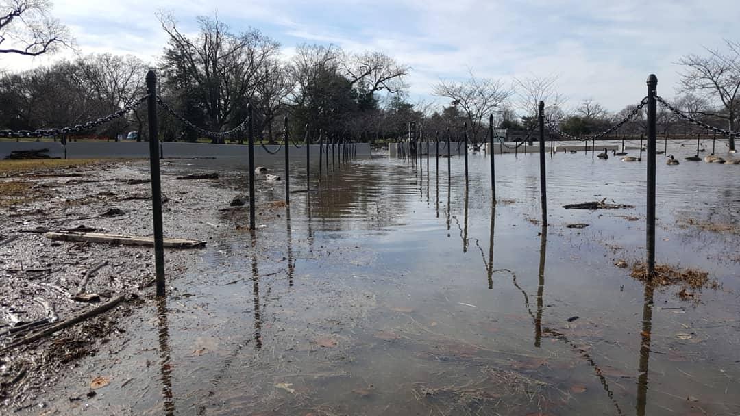 Tidal Basin Flooding 2.jpg
