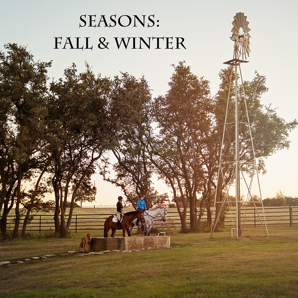 seasons - fall winter.jpg