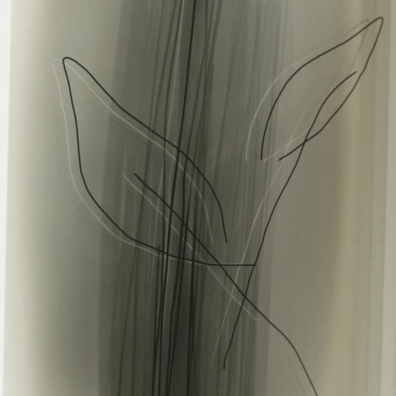 iPhone ART -