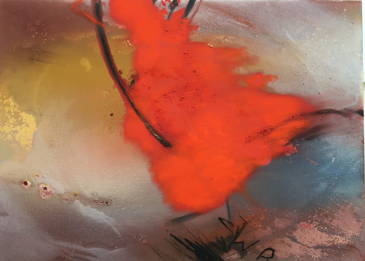 Red Cardinal (Arizona Desert series)