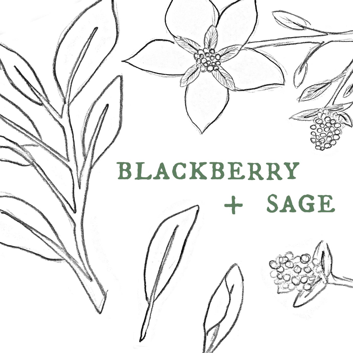 Blackberry Sage.png
