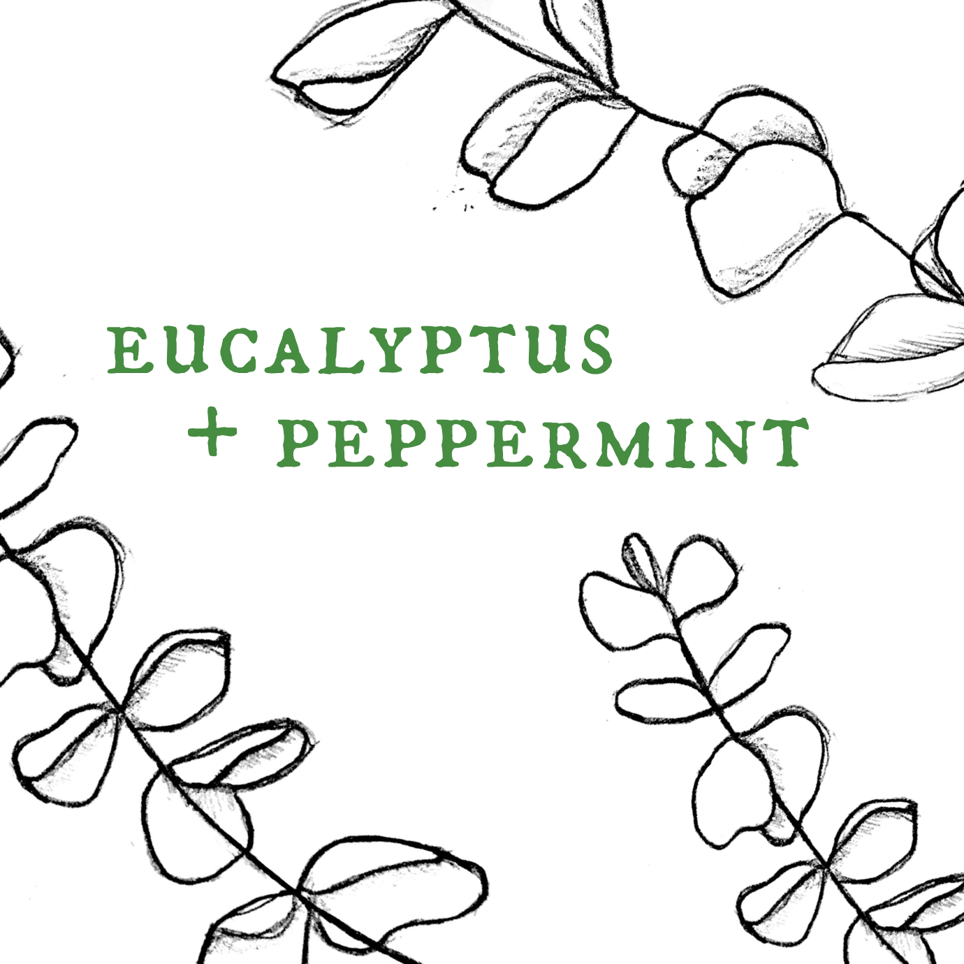 Eucalyptus and Peppermint.png