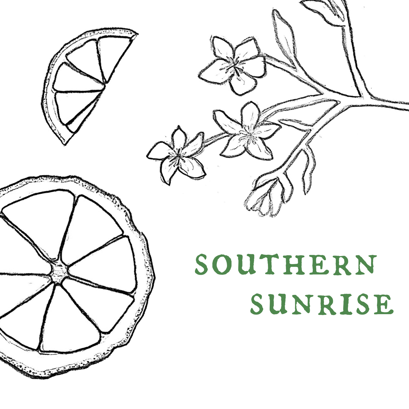 Southern Sunrise.png