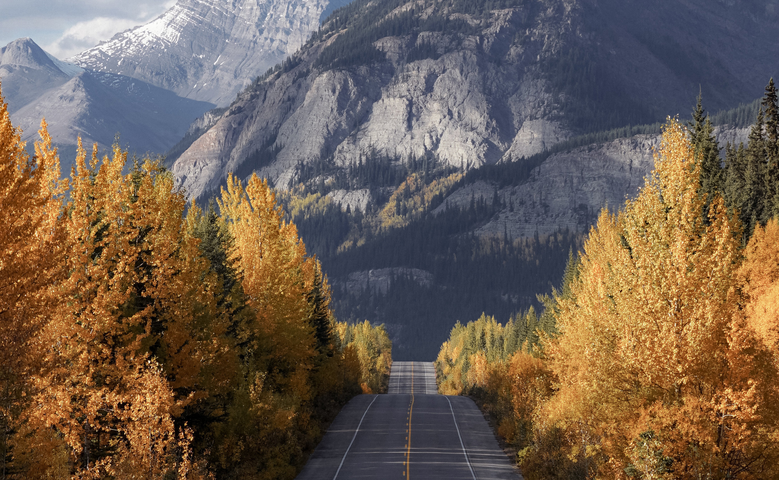autumn rockies.jpg