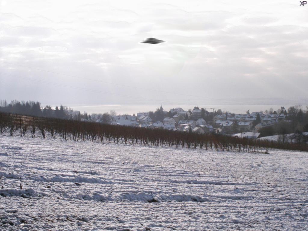 ufo-meersburg.jpg