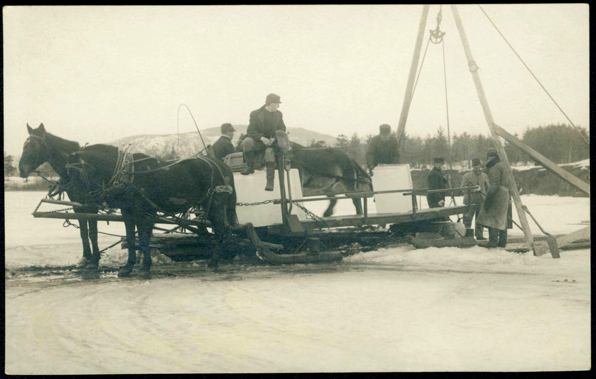 Ice Sled - Historic Photo