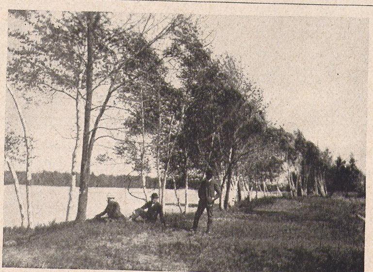 Berry Lake 2.jpg