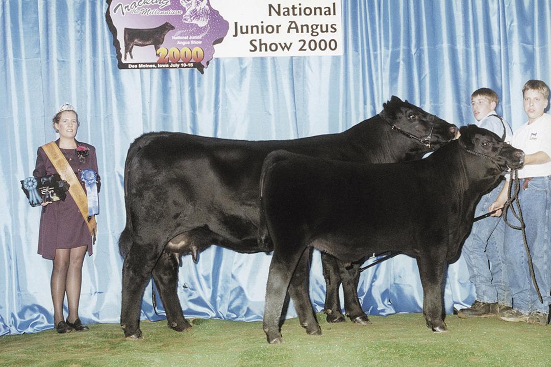ONeills Delia 703 - Granddam Reserve Grand Champion Cow/Calf Pair at the 200 Iowa and Nebraska State Fairs, class winner 2000 National Angus Show.