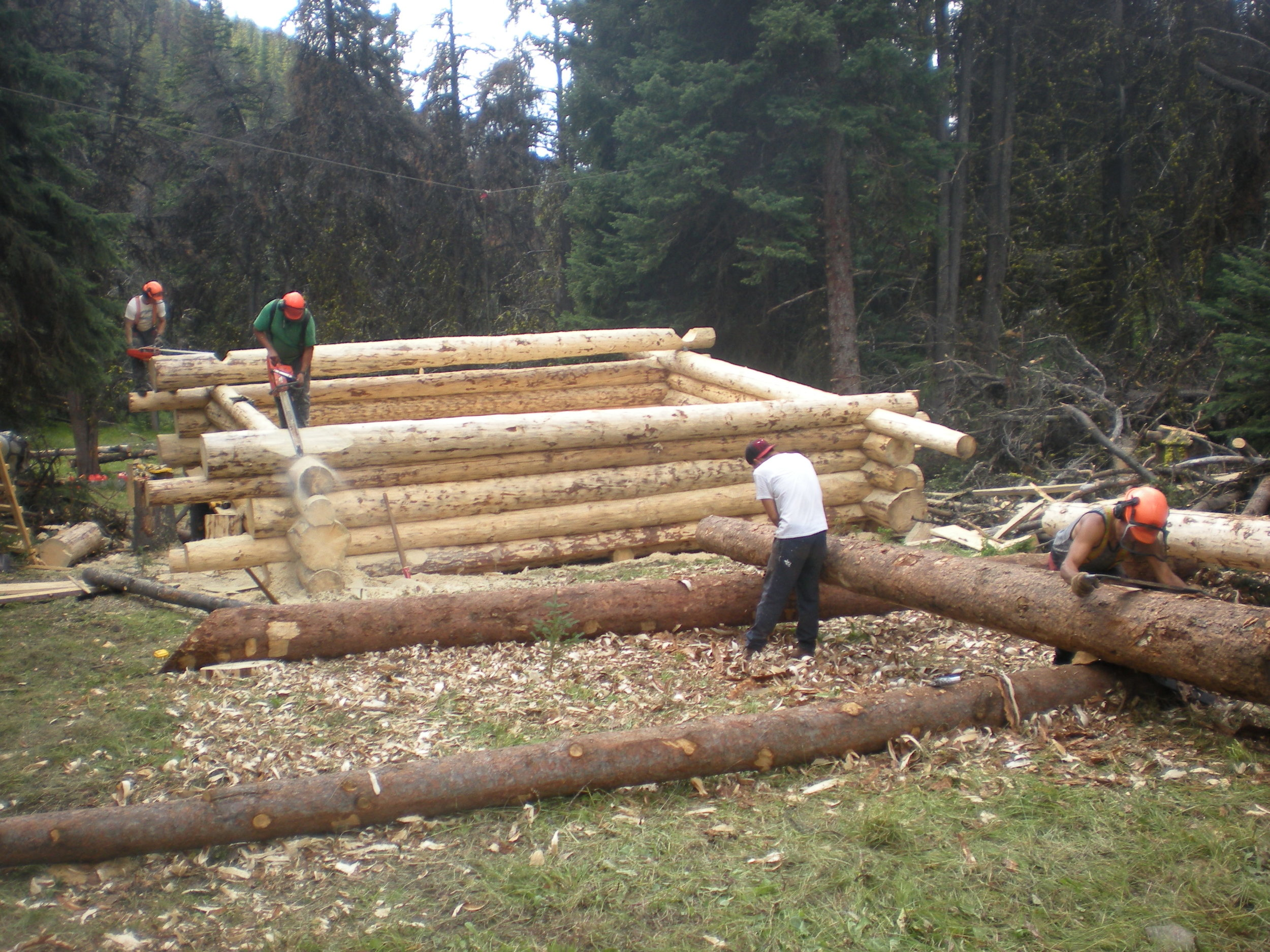 Building the cabin.JPG