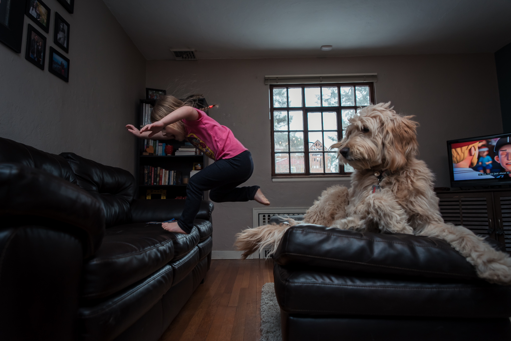 Leaping off the couch