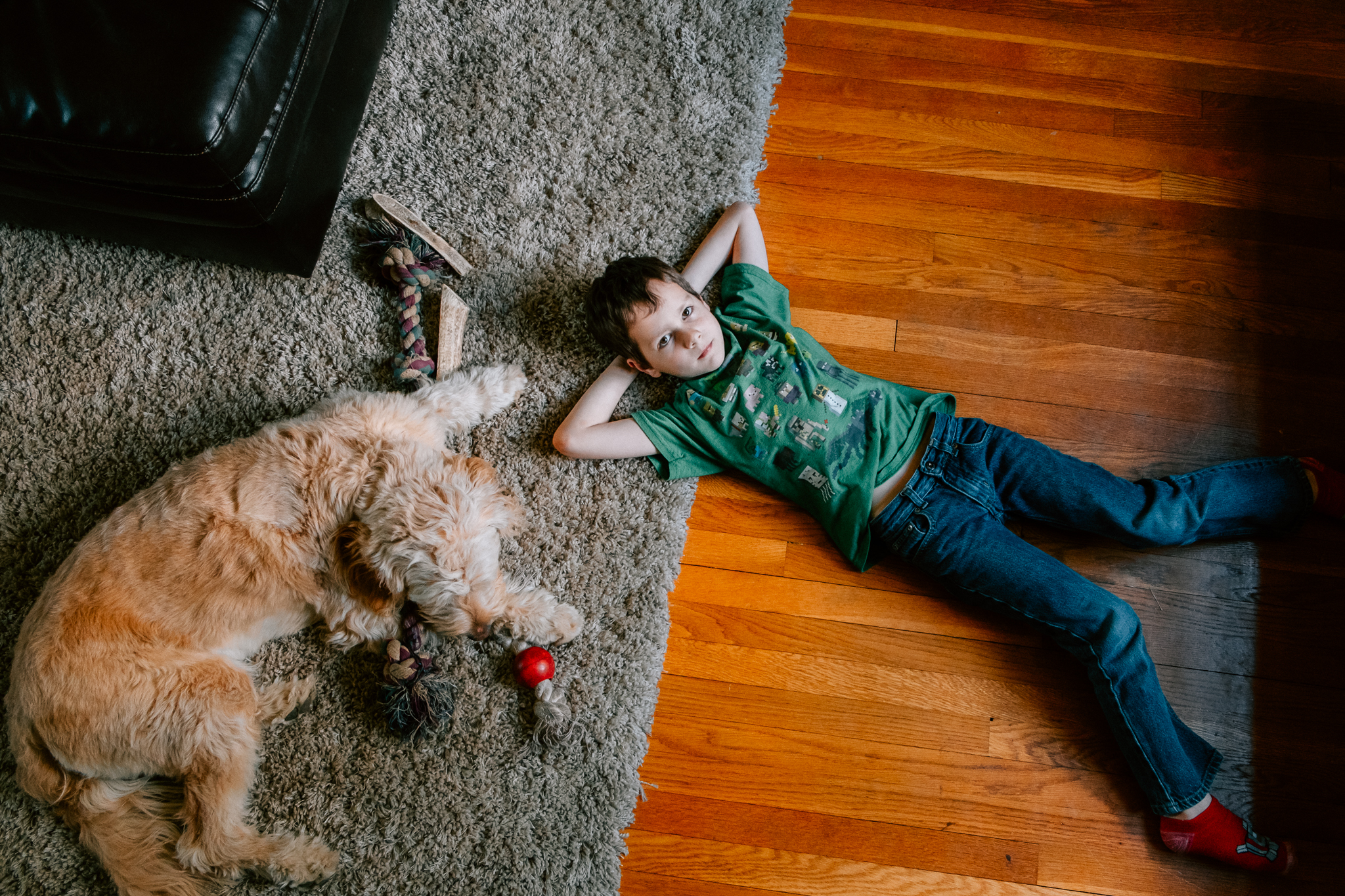 dog and a boy at home