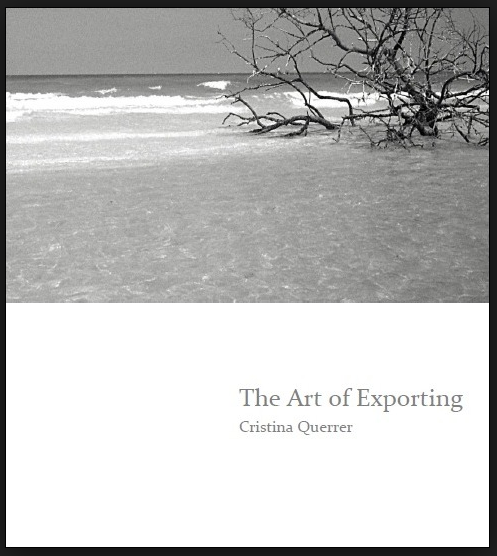 The Art of Exporting - Poetry chapbook published by dancing girl press.