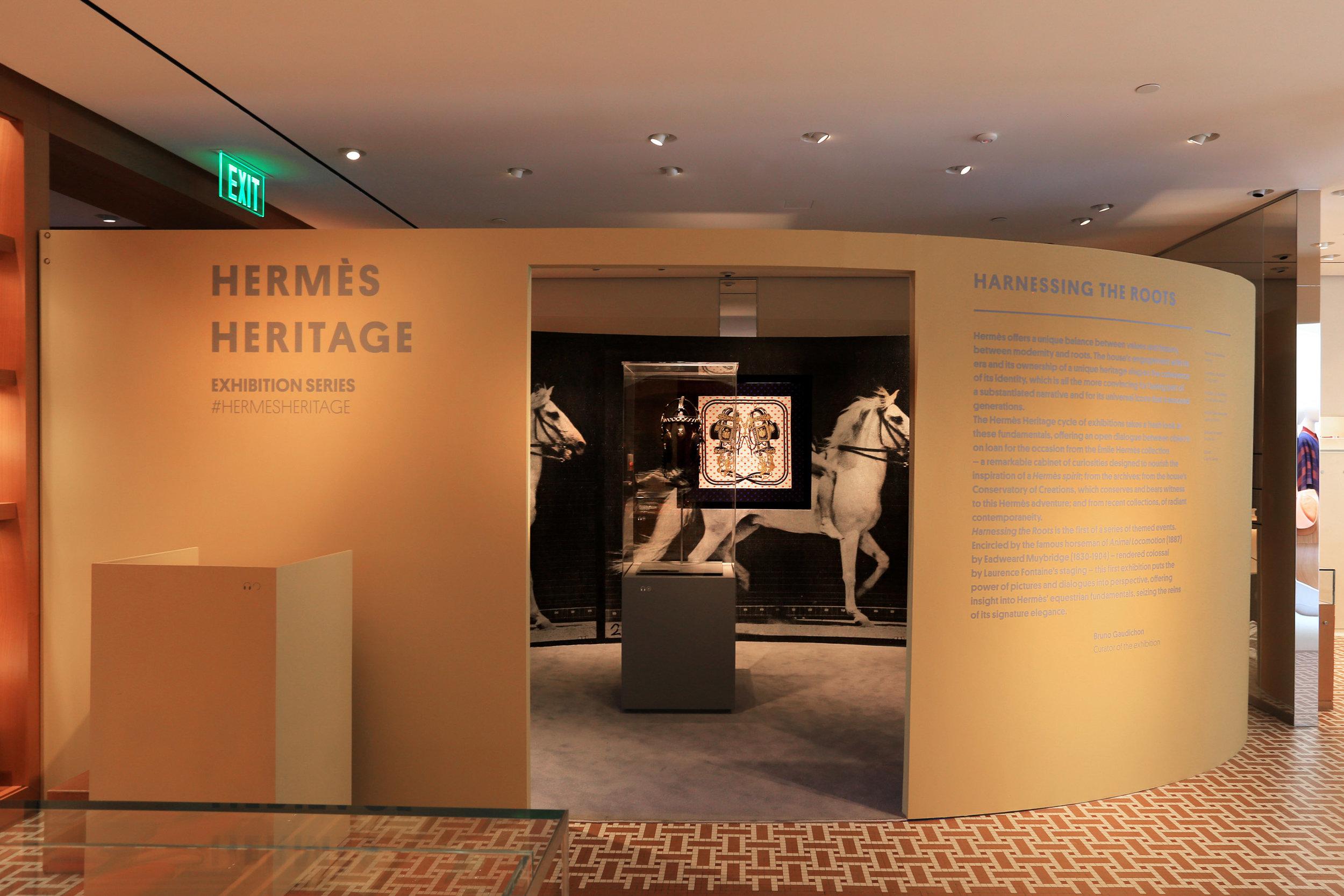 HERMES-NFP001.jpg