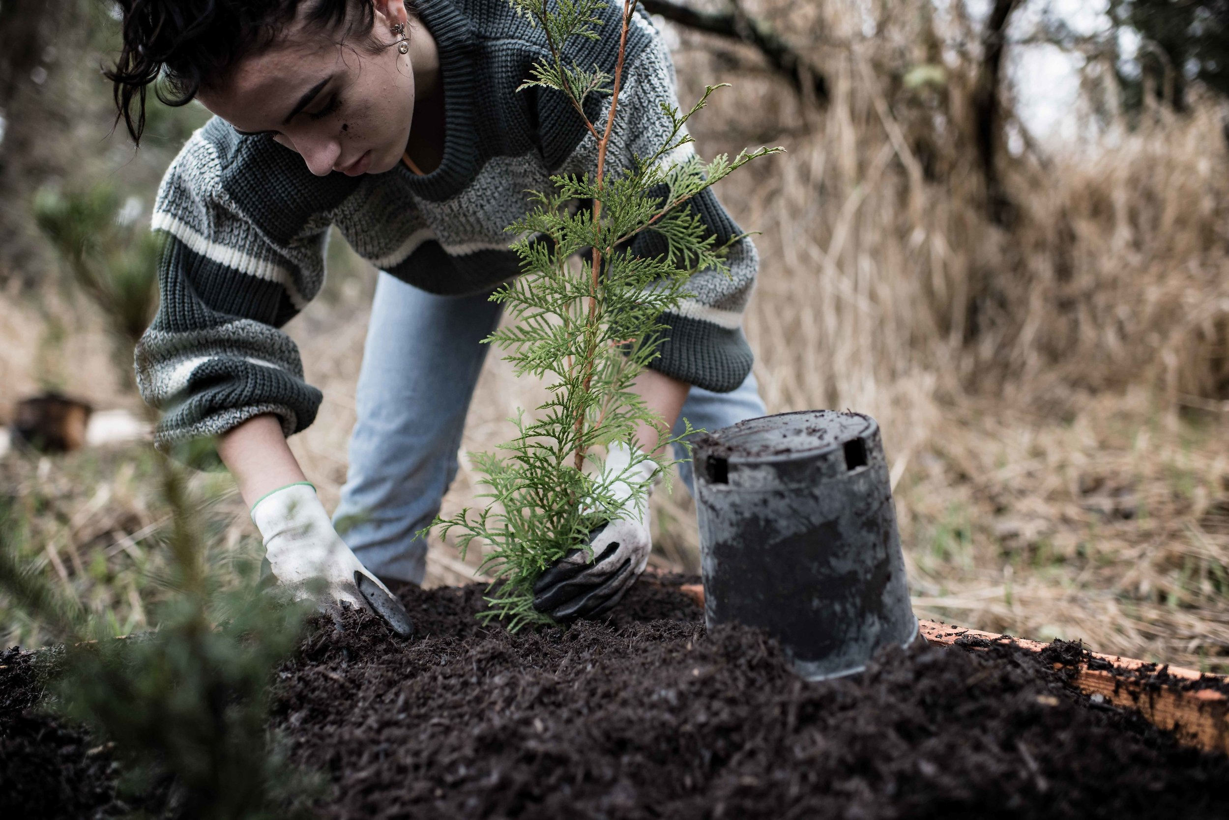 Amina Stier Planting 2018 copy.jpg