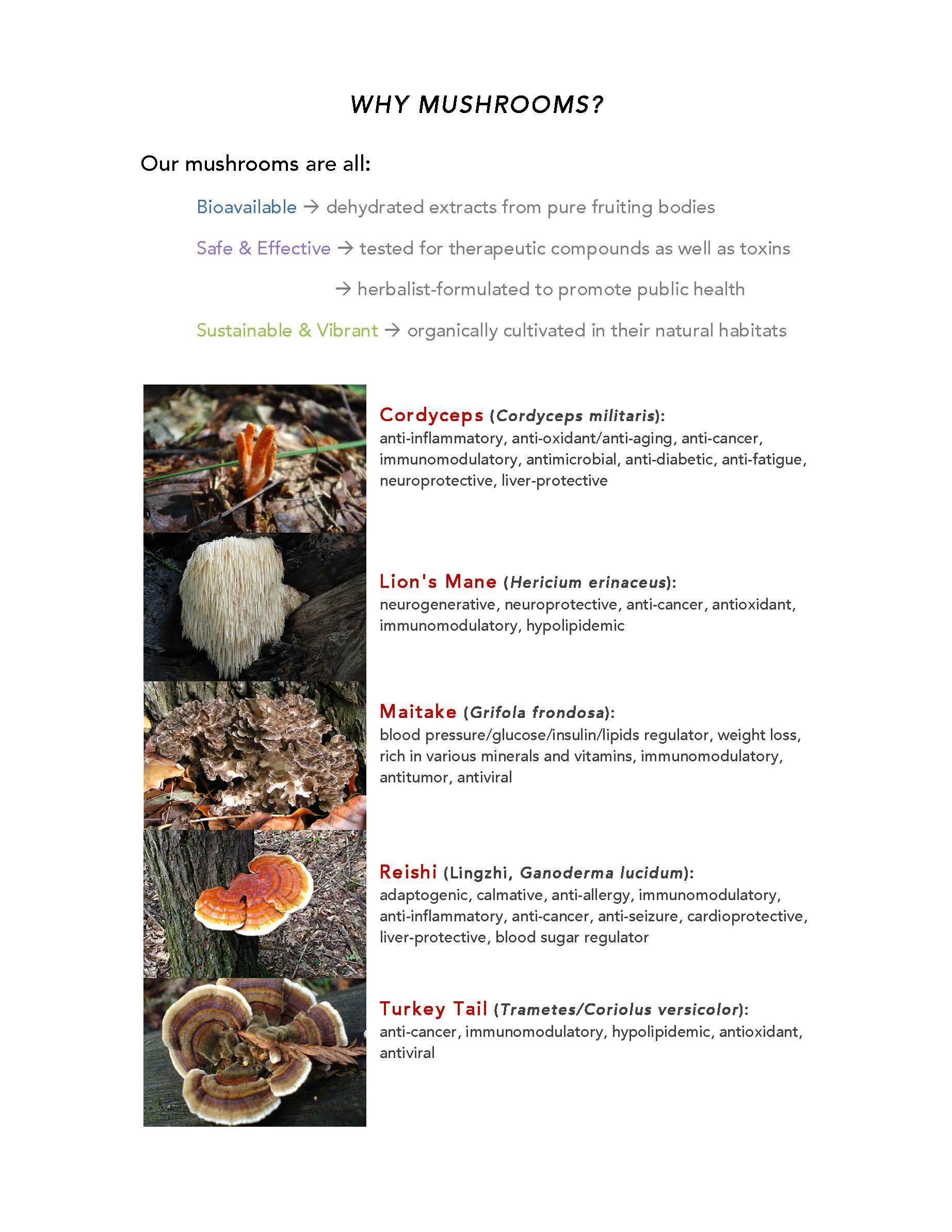 Why Mushrooms.jpg