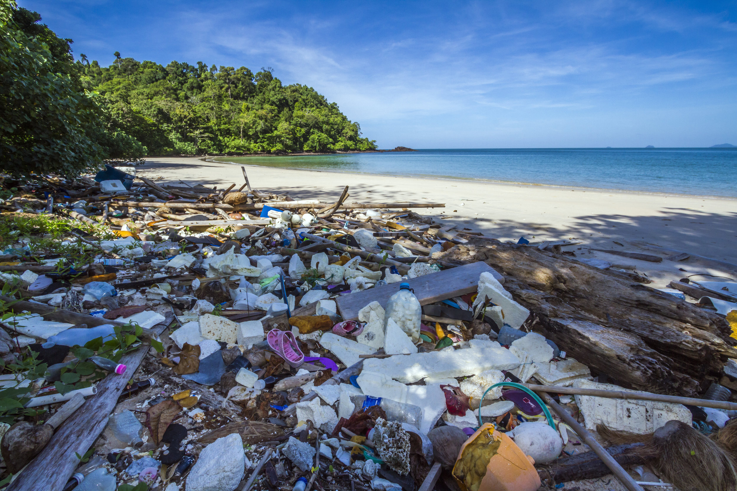Plastic has overtaken our beaches and waters.