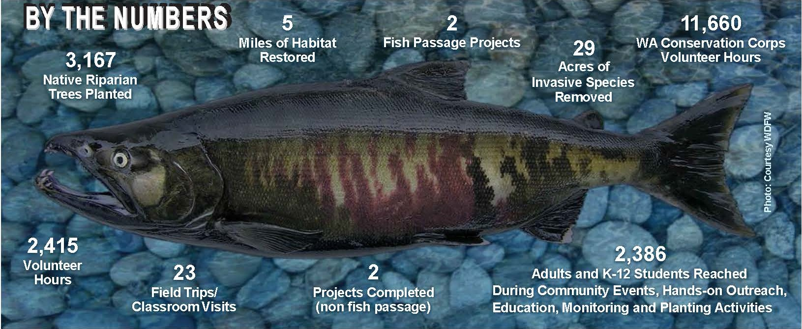 accomplifish 17-18.jpg
