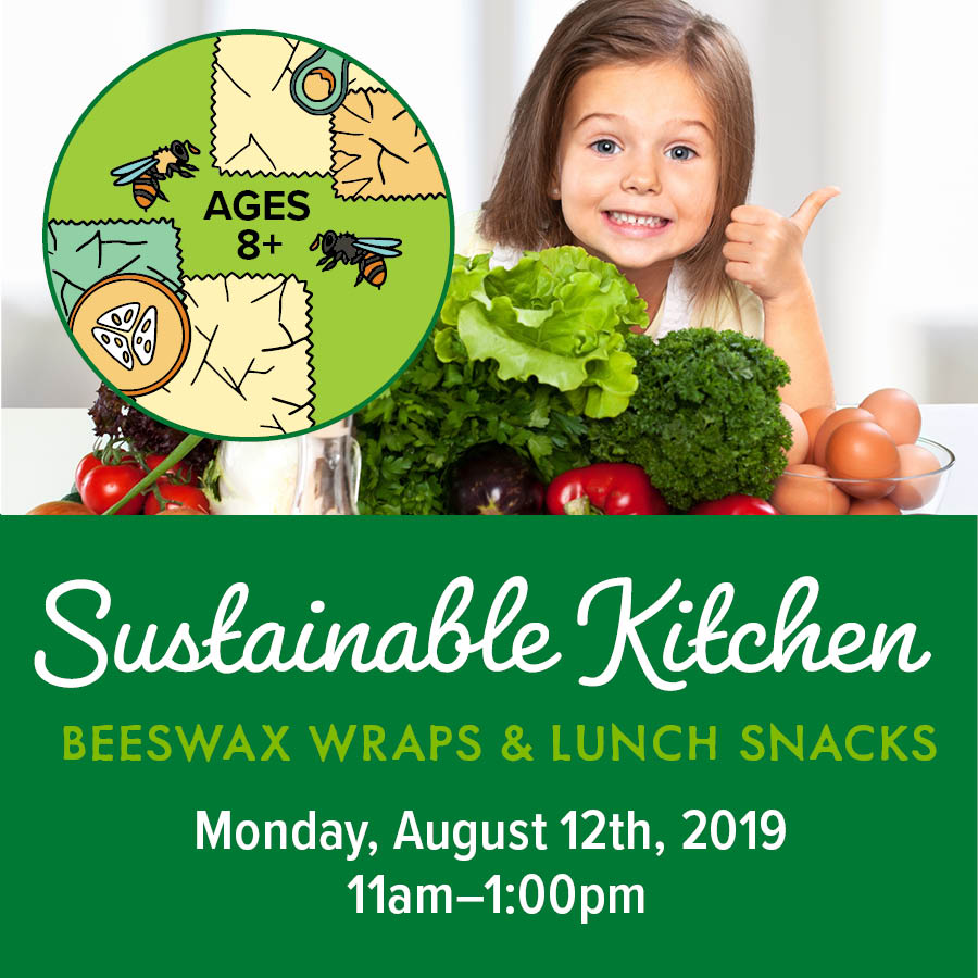 Sustainable Kitchen Lunch snacks and bags June2019_SM.jpg