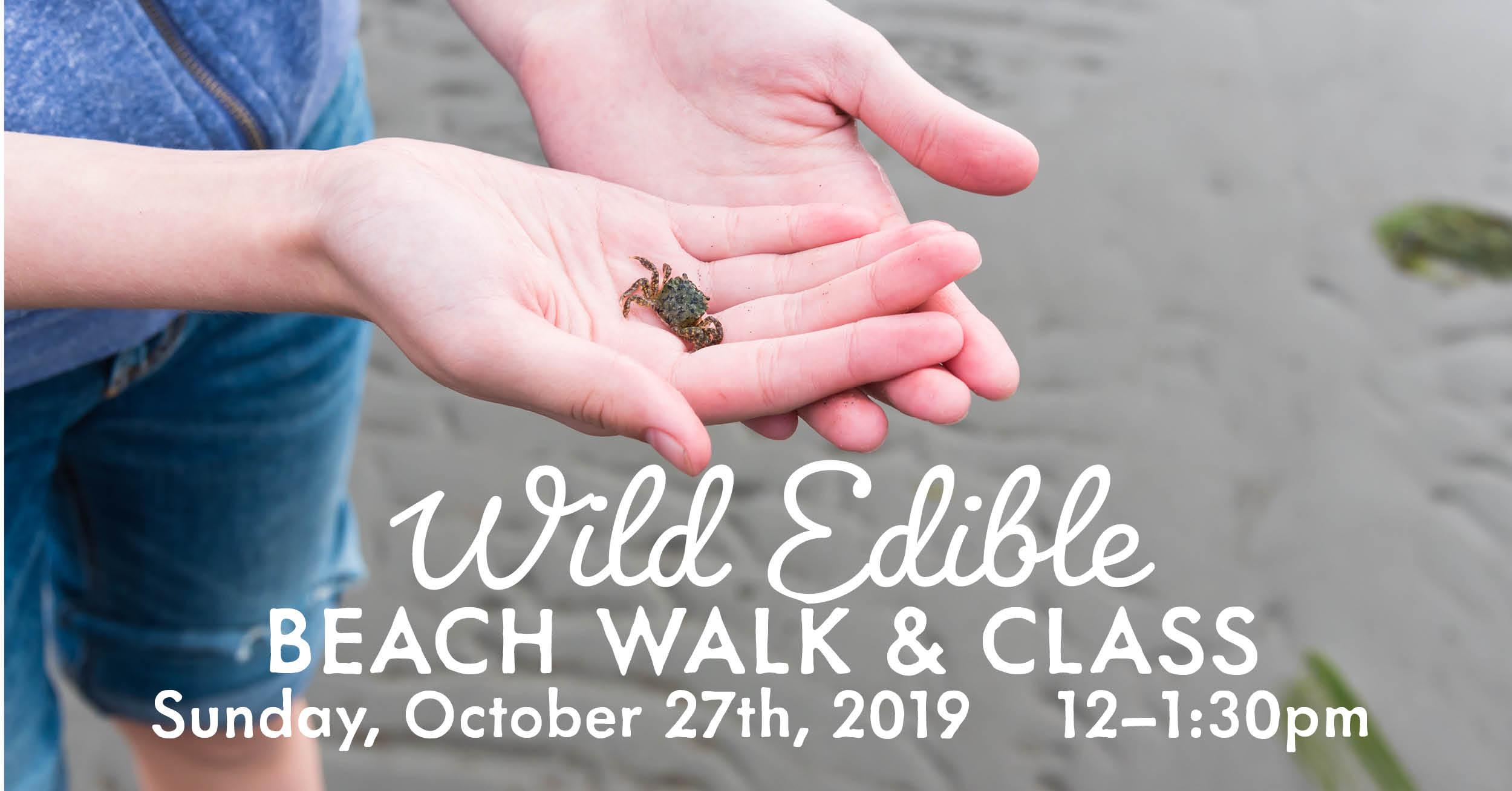 Wild Edibles Beach Oct 2019_FB.jpg